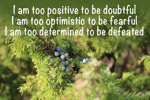 I am too positive to be doubtful