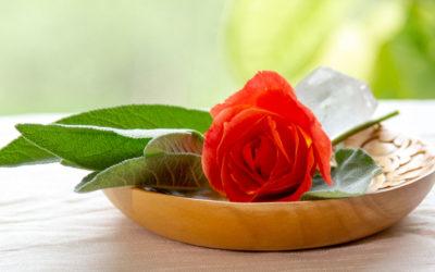Skab et fredfyldt hjørne hvor du kan tjekke ind i dig selv