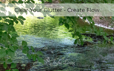 Clutter Clearing Creates Ease, Flow and Joy in Your Life