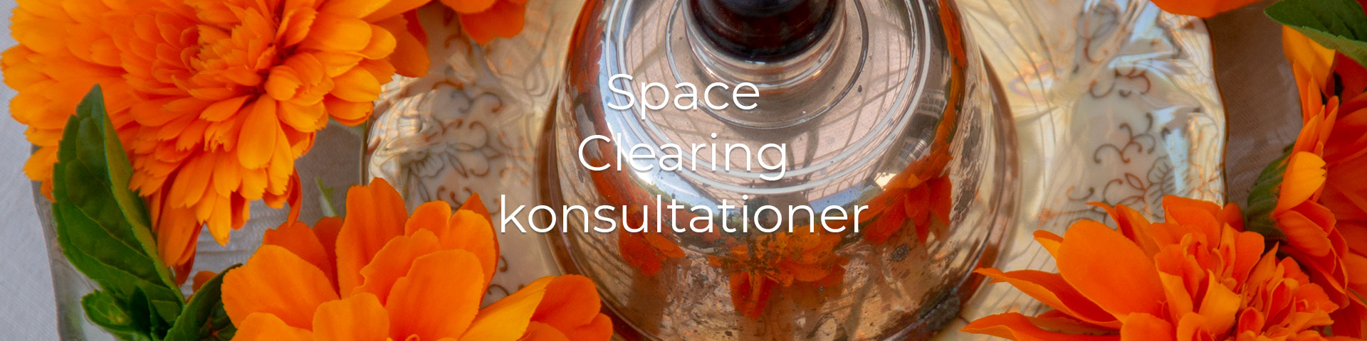 Space Clearing konsultation