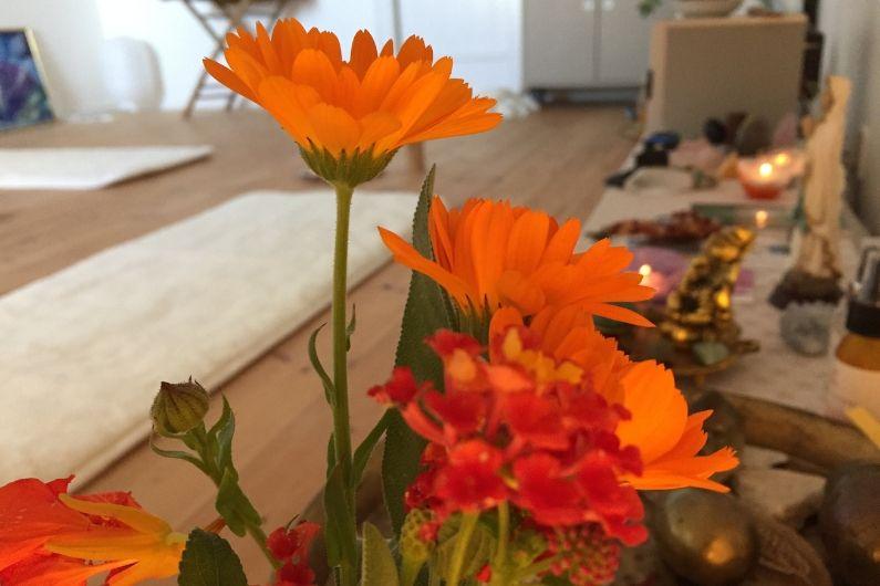 Kundalini Yoga forløb med Joyann